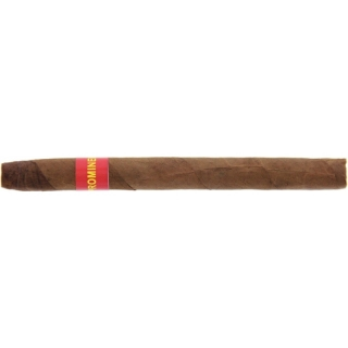 Prominent Cigar Panatella 5er